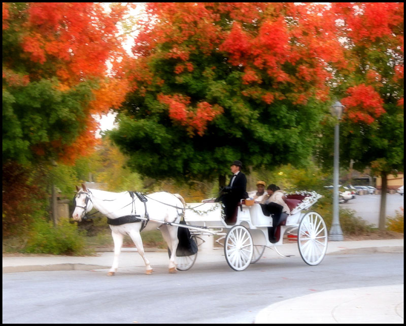carriage-glam-filt-small